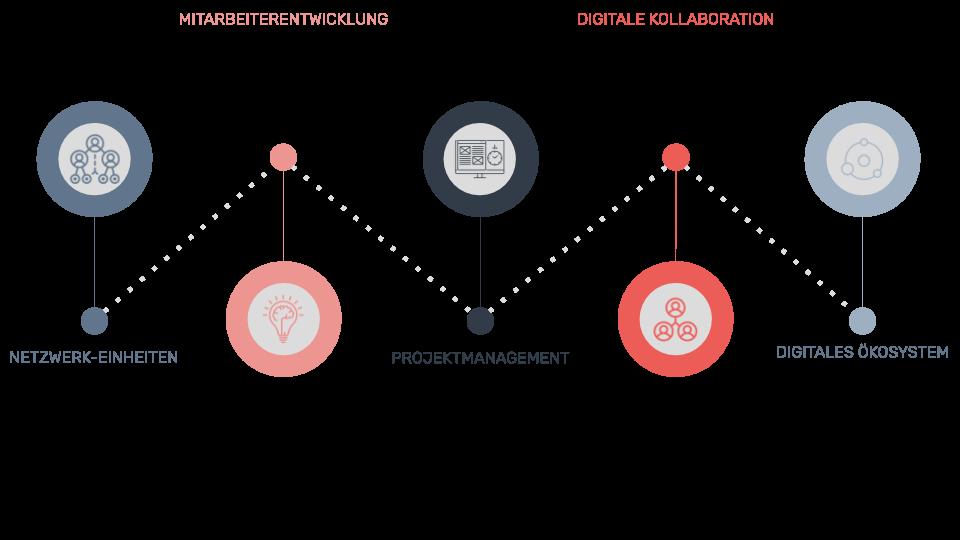 Projektmanagement & Organisationsentwicklung